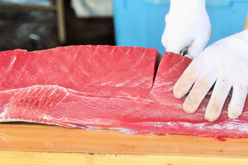 生魚の写真