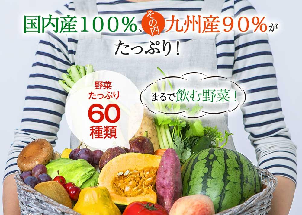 国産100%、その内九州産90%がたっぷり!野菜たっぷり60種類 まるで飲む野菜!